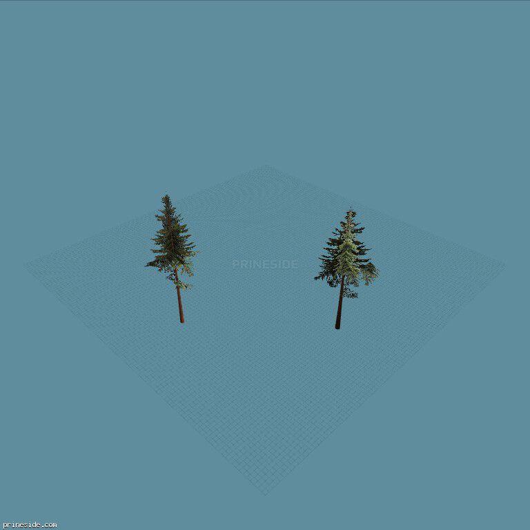 Two coniferous tree (cw2_mntfir11) [18269] on the dark background