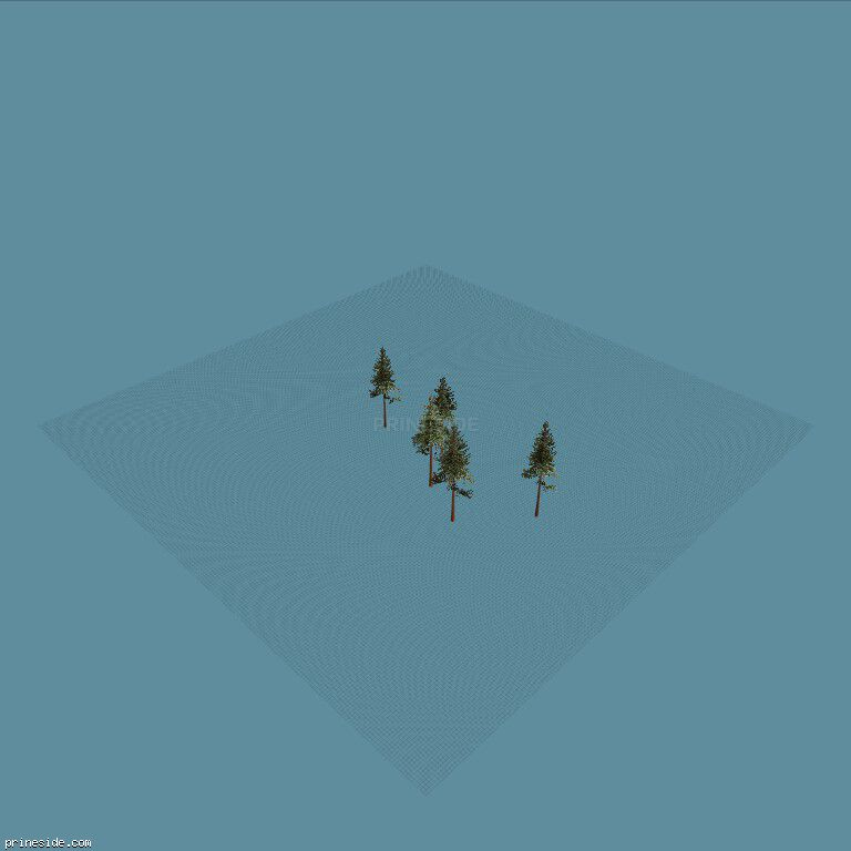 Five tall pine trees  (cw2_mntfir13) [18270] on the dark background