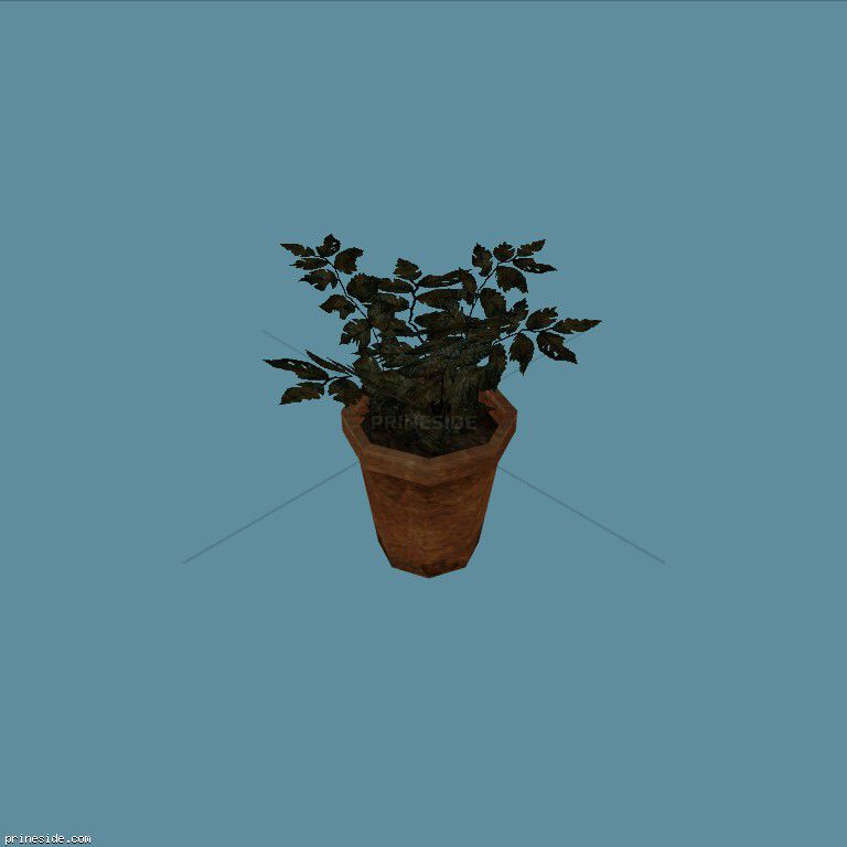 A small potted plant (Plant_Pot_5) [2241] on the dark background