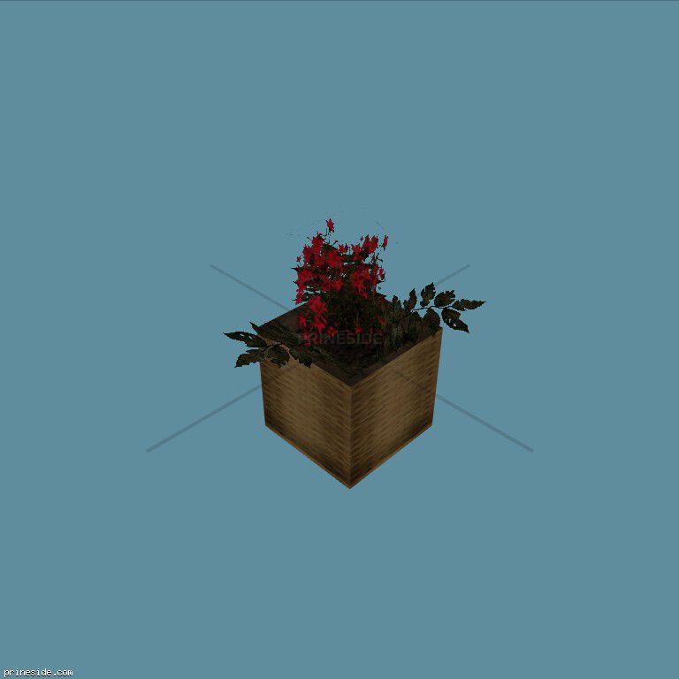 Plant_Pot_22 [2253] на темном фоне