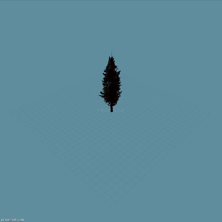 Coniferous tree (pinetree03) [660] on the dark background