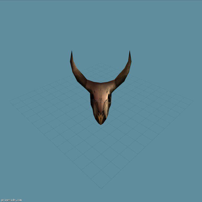 Great horned skull (steerskull) [6865] on the dark background