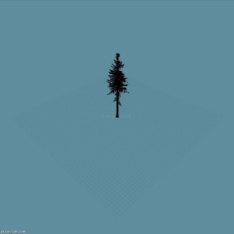Высокое хвойное дерево (sm_fir_) [687] на темном фоне