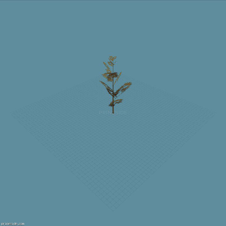 Tall tree (tree_hipoly07) [729] on the dark background