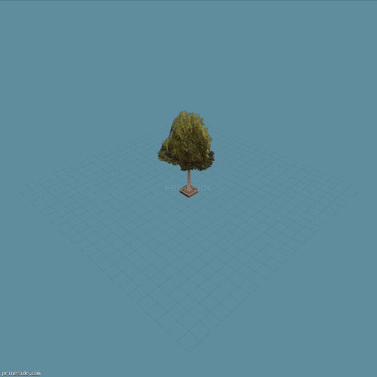 Зеленое густое дерево из клумбы (aw_streettree2) [738] на темном фоне