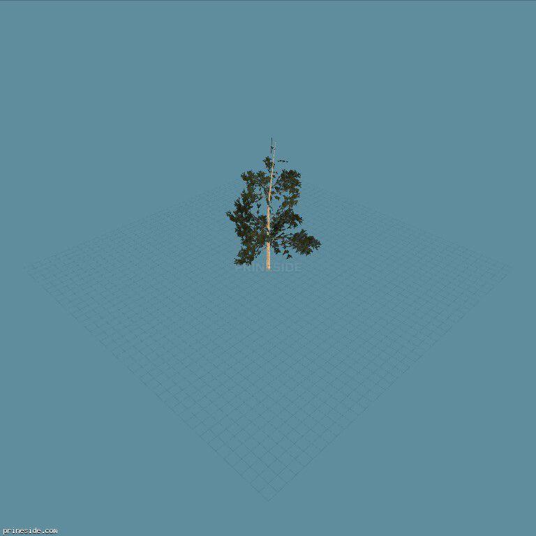 Pinebg_hi [770] on the dark background