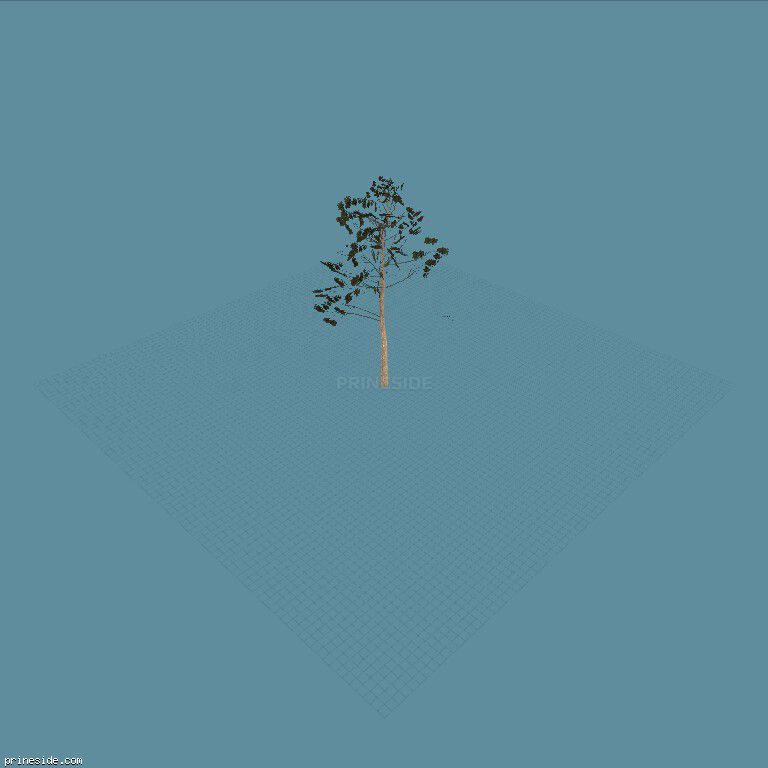A small tree (Hazeltall_hi) [777] on the dark background