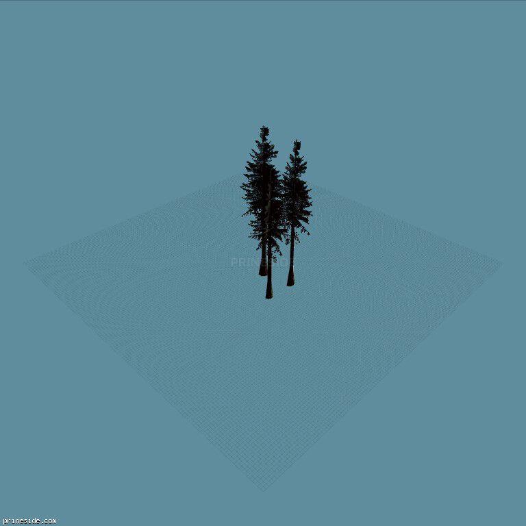 sm_fir_tallgroup [790] on the dark background