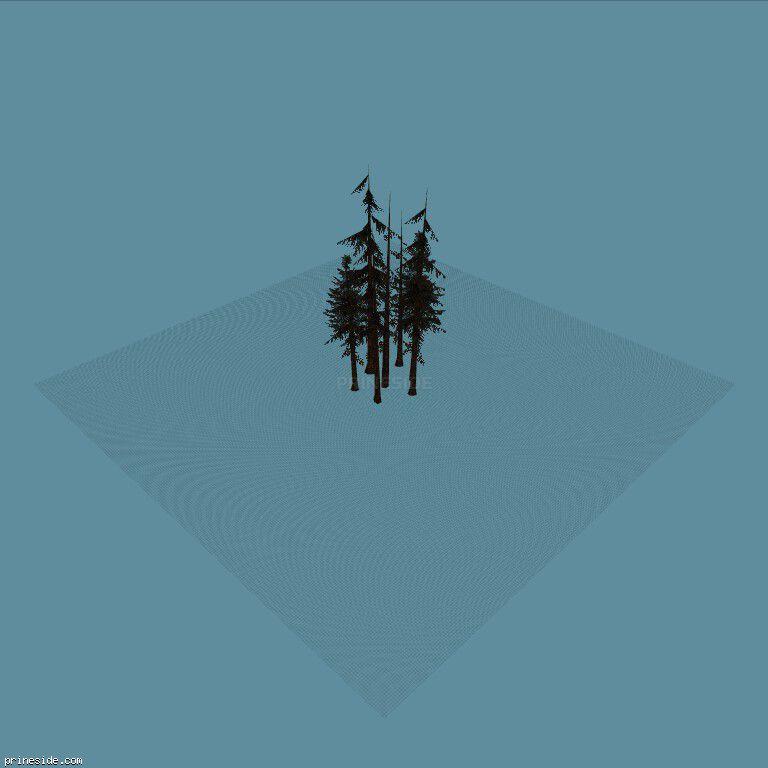 vbg_fir_copse [791] on the dark background