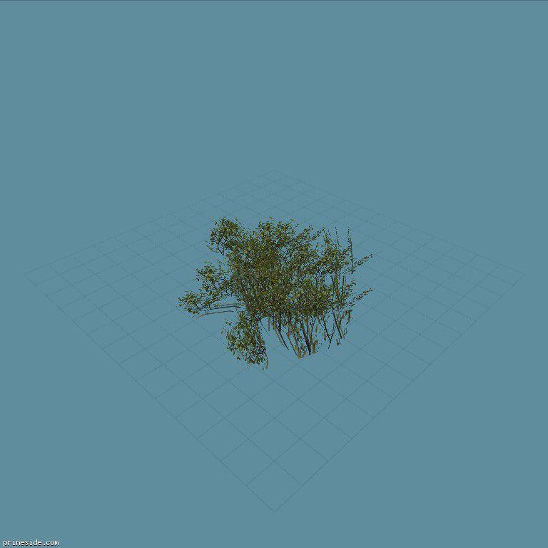 genVEG_tallgrass10 [826] on the dark background