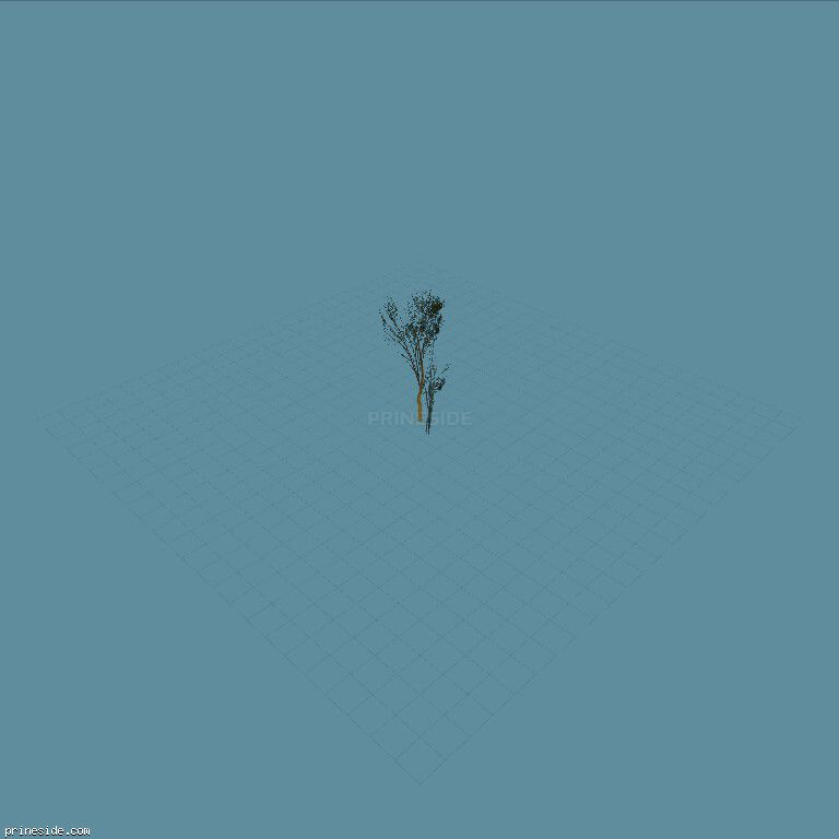 A small tree (Elmsparsesm_PO) [894] on the dark background