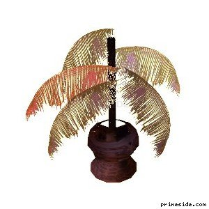 A potted palm (BDups_plant) [14804] on the light background