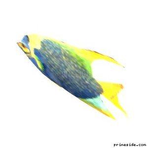 fish2single [1600] на светлом фоне