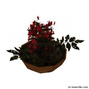 Red flowers in a pot (Plant_Pot_11) [2245] on the light background