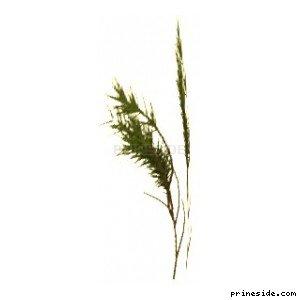 Plant_Pot_15 [2247] на светлом фоне