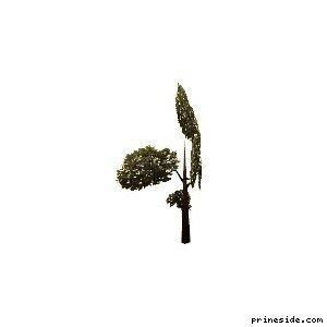 veg_tree3 [615] на светлом фоне