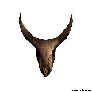 Great horned skull (steerskull) [6865] on the light background