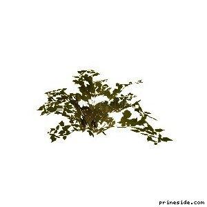 genVEG_bush08 [802] на светлом фоне
