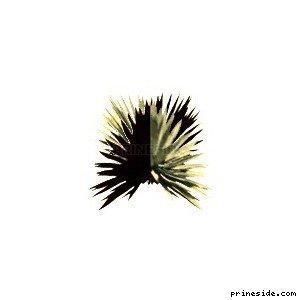 sand_plant01 [860] на светлом фоне