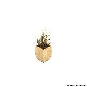 Plant_Pot_10 [948] on the light background